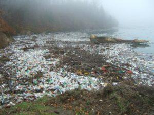 Plastik zerstört unsere Umwelt, Wassersprudler kaufen
